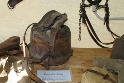 First World War Gas Mask. World War 1 gas mask for a
